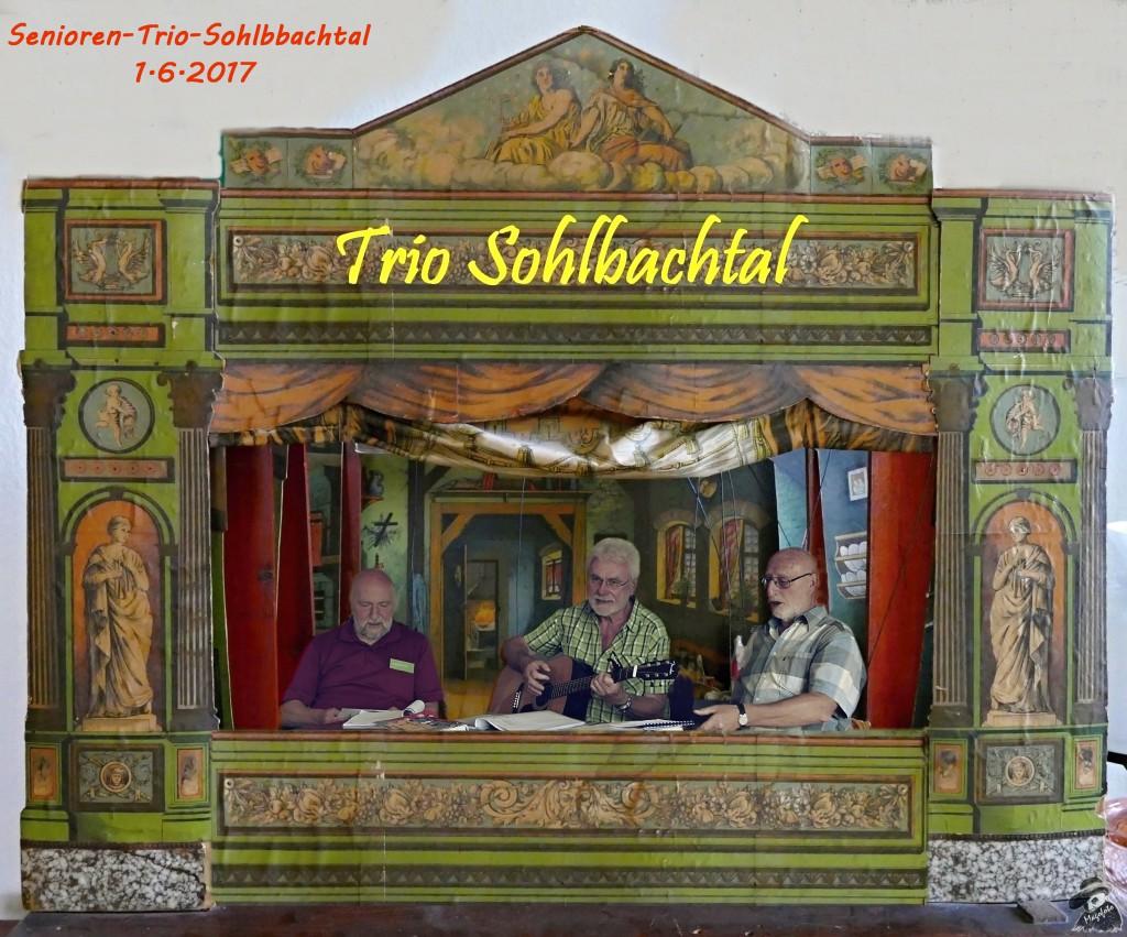 6 -Senioren -Trio -Sohlbachtal